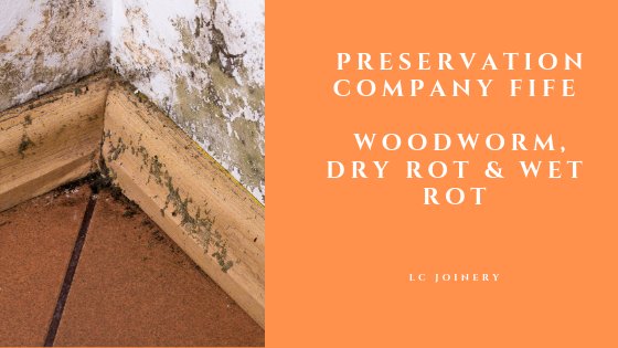 Preservation Company Fife: Woodworm, Dry Rot & Wet Rot