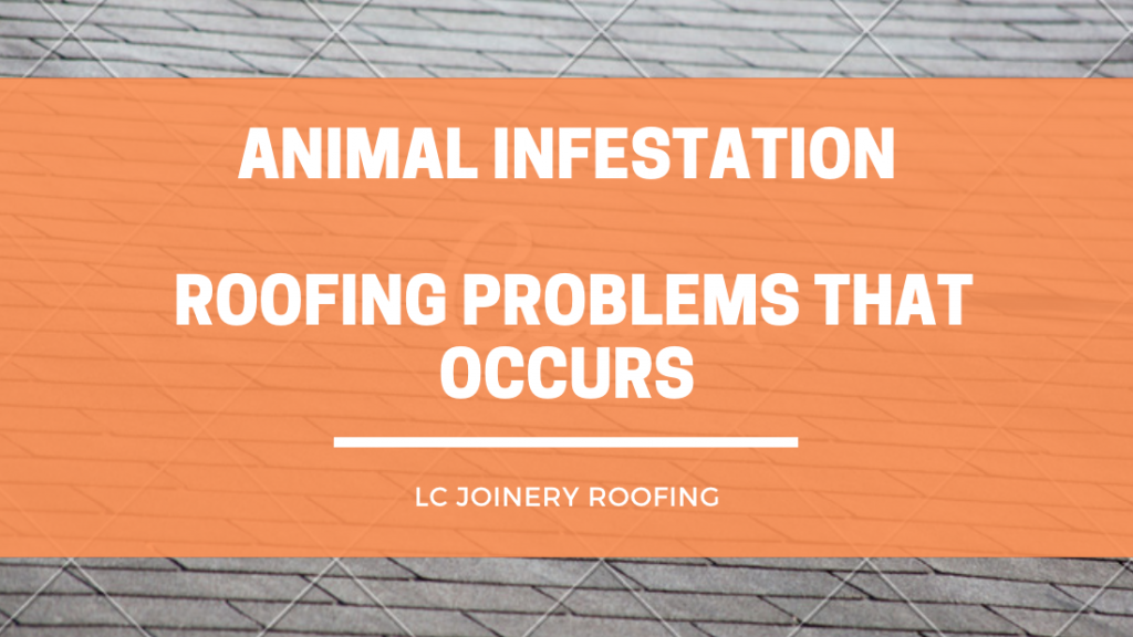 Animal Infestation – Roofing Problems That Occurs
