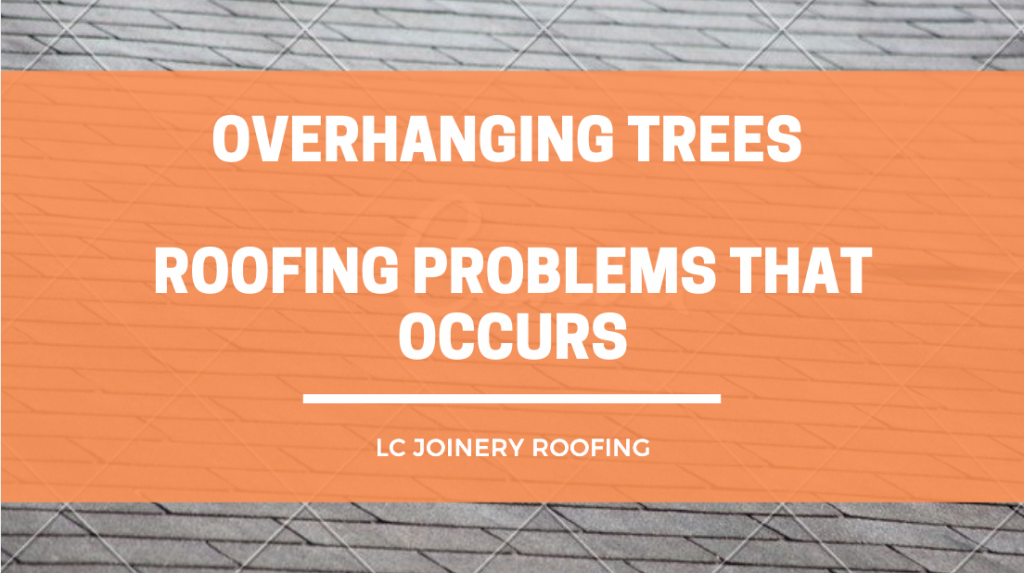 Overhanging Trees – Roofing Problems That Occurs