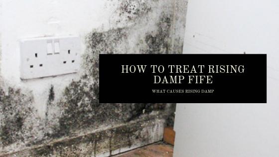 How To Treat Rising Damp Fife