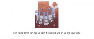 How rising damp can rise up from the ground and on up into your walls