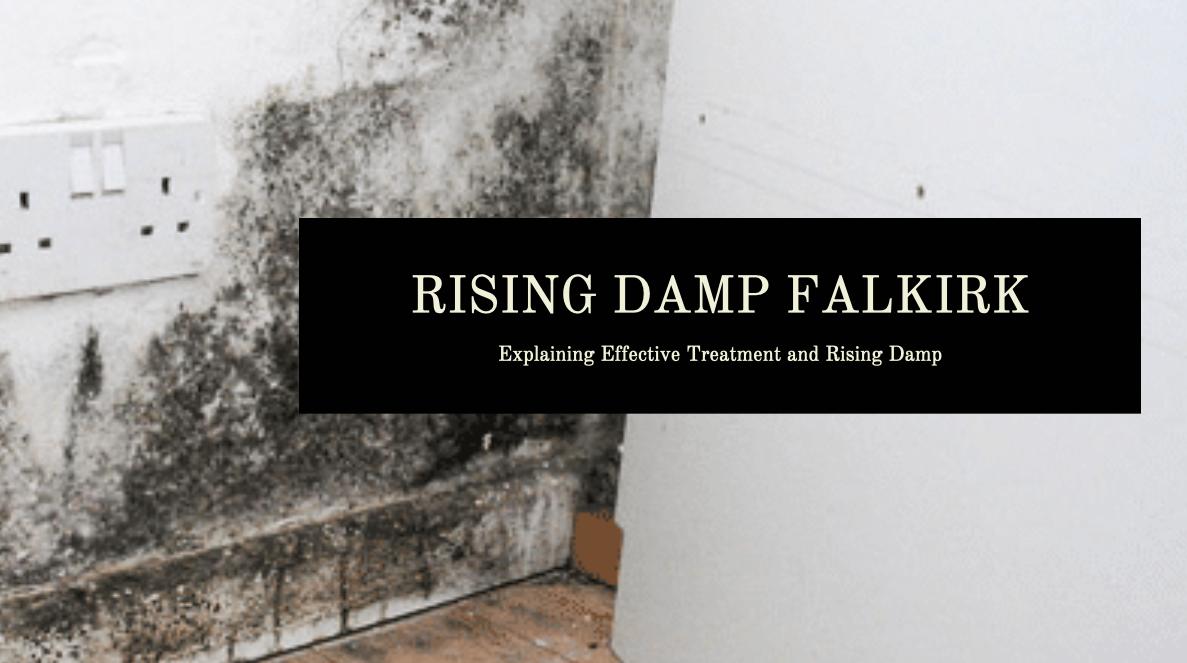 Rising Damp Falkirk