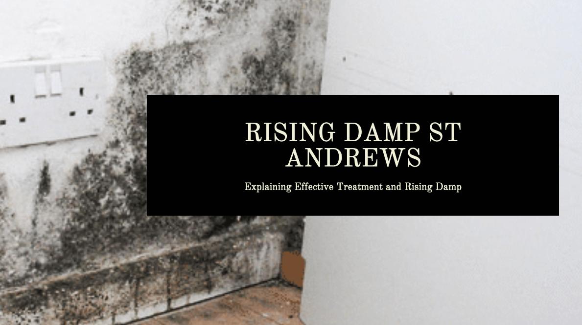 Rising Damp St Andrews